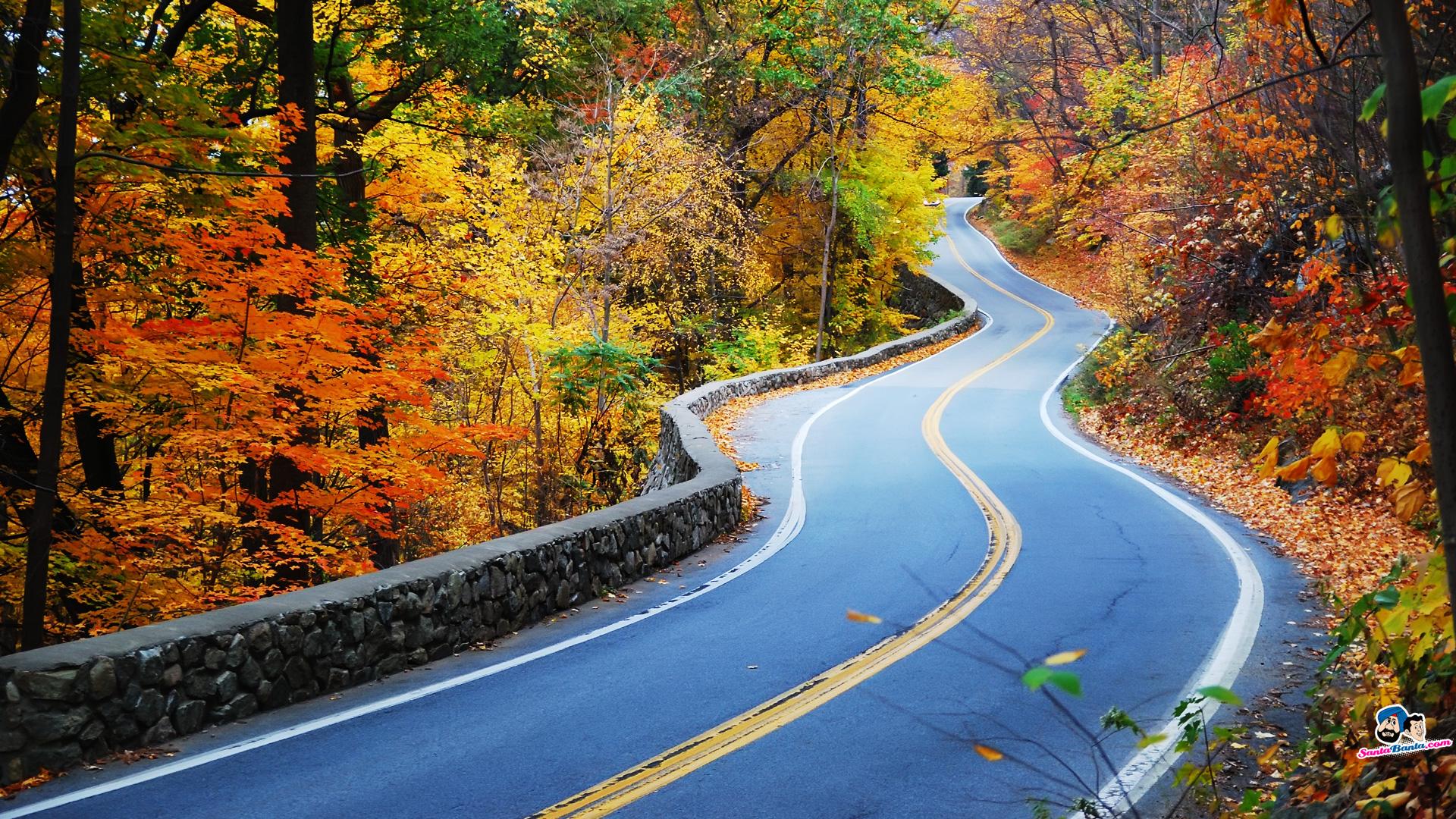 Petnajst Najlep Ih Cest Po Na Em Izboru Bmwblog