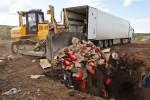 bmw-dtm-russia-destroying-food (4)
