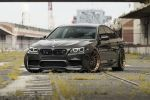 bmw-f10-m5-jatoba-brown (14)