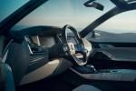 World Premiere - 2019 BMW X7 iPerformance  (14)