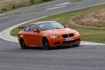 BMWBLOG-BMW-M3_GTS--fish-lake-recovery-accident (3)